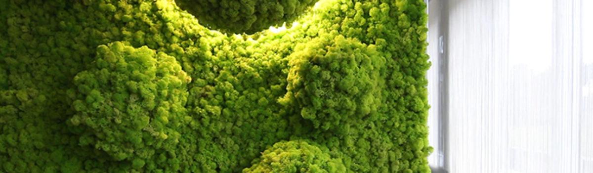Green Tech Philosophy